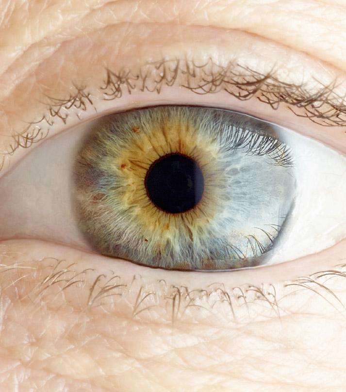 Het oog van Annemiek
